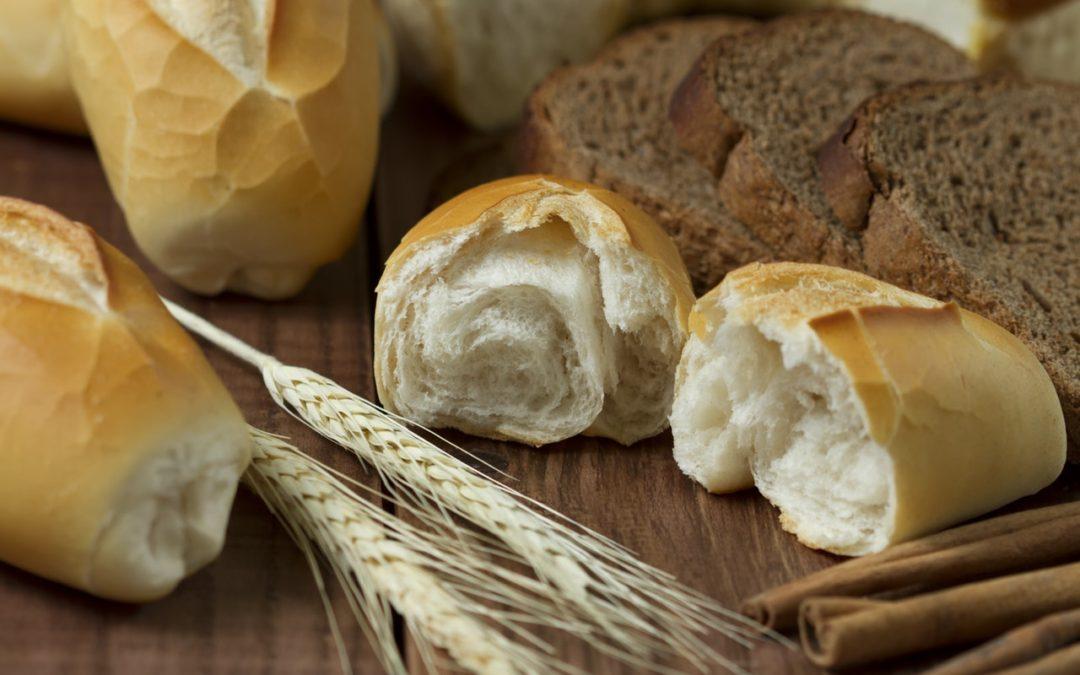 White Bread vs. Whole Grain Bread